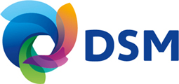 DSM Engineering Plastics logo